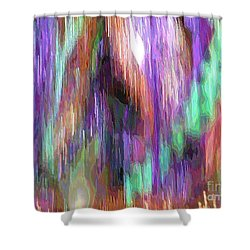 Celeritas 11 Shower Curtain