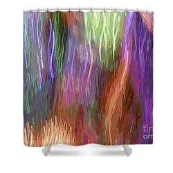 Celeritas 12 Shower Curtain
