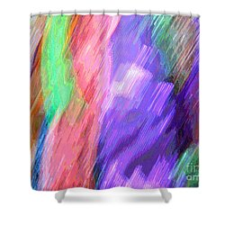 Celeritas 15 Shower Curtain