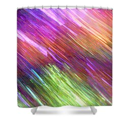 Celeritas 17 Shower Curtain