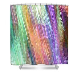 Celeritas 19 Shower Curtain