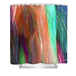 Celeritas 20 Shower Curtain