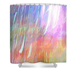 Celeritas 25 Shower Curtain