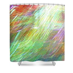 Celeritas 26 Shower Curtain
