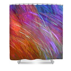 Celeritas 27 Shower Curtain