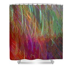 Celeritas 28 Shower Curtain