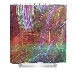 Celeritas 29 Shower Curtain