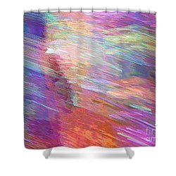Celeritas 3 Shower Curtain