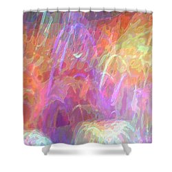Celeritas 31 Shower Curtain