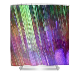 Celeritas 4 Shower Curtain