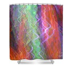 Celeritas 41 Shower Curtain