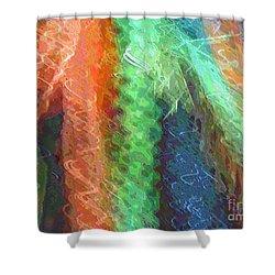 Celeritas 42 Shower Curtain