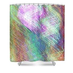 Celeritas 49 Shower Curtain