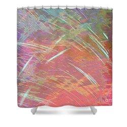 Celeritas 65 Shower Curtain