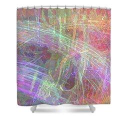 Celeritas 66 Shower Curtain