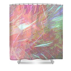 Celeritas 68 Shower Curtain