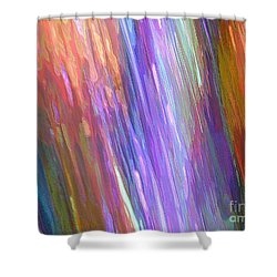 Celeritas 7 Shower Curtain