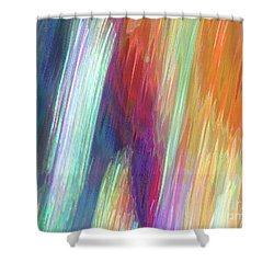 Celeritas 8 Shower Curtain