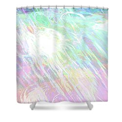 Celeritas 9 Shower Curtain