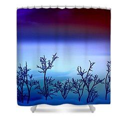 Celestial Stem Shower Curtain by Peter R Nicholls