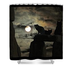 Celtic Nights Shower Curtain