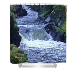 Shower Curtain featuring the photograph Cenarth Falls by John Williams