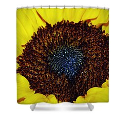 Center Of A Sunflower Shower Curtain by Cynthia Guinn