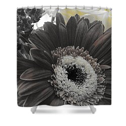 Shower Curtain featuring the photograph Centerpiece by Photographic Arts And Design Studio