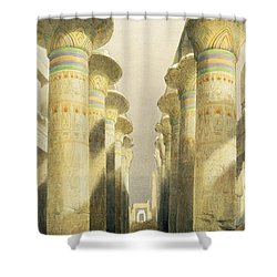 Central Avenue Of The Great Hall Of Columns Shower Curtain by David Roberts