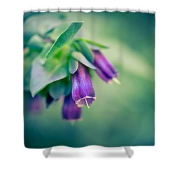 Cerinthe Abstract Shower Curtain by Priya Ghose