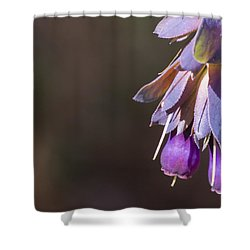 Cerinthe Shower Curtain by Caitlyn  Grasso