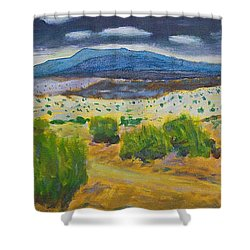 Cerrillos Spring Shower Curtain
