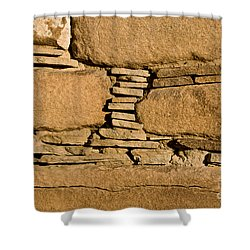 Chaco Bricks Shower Curtain by Steven Ralser