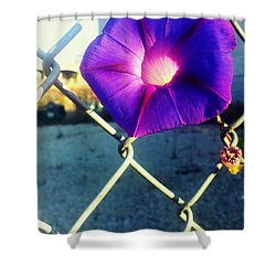 Chained Splendor Shower Curtain by James Aiken