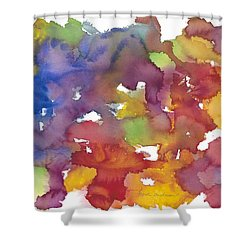 Chakra Balance Shower Curtain