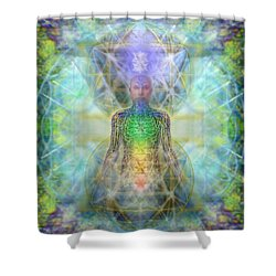 Chakra Tree Anatomy In Chalice Garden Shower Curtain by Christopher Pringer