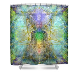 Chakra Tree Anatomy With Mercaba In Chalice Garden Shower Curtain