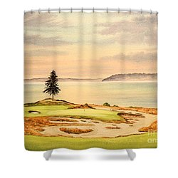 Shower Curtain featuring the painting Chambers Bay Golf Course Hole 15 by Bill Holkham