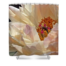 Champagne Peony Shower Curtain