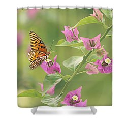 Chance Encounter Shower Curtain by Kim Hojnacki