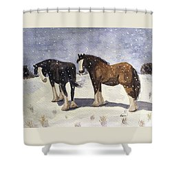 Chance Of Flurries Shower Curtain by Angela Davies