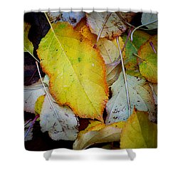 Change Of Season Shower Curtain by Michelle Wrighton