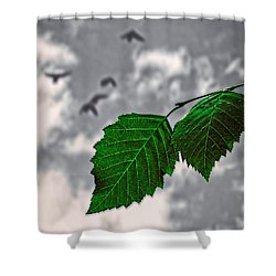Changes Shower Curtain by Bob Orsillo