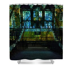 Chaos Shower Curtain by Tina Baxter