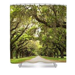 Charleston Avenue Of Oaks Shower Curtain by Stephanie McDowell