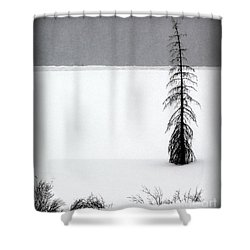 Charlie Brown's Christmas Tree Shower Curtain
