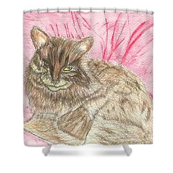 Shower Curtain featuring the painting Charlie by Tracey Williams