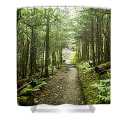 Shower Curtain featuring the photograph Charlies Bunion Bald Trail by Debbie Green