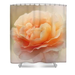 Charmaine Shower Curtain