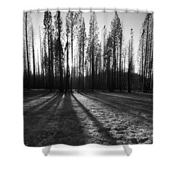 Charred Silence - Yosemite Rm Fire 2013 Shower Curtain